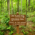 Signage helps to direct you through the trails.- Paris Mountain State Park