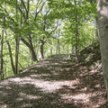 The trail follows a wide road.- Storm King Mountain