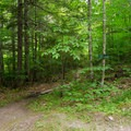 A junction with a trail leading to the Gill Brook Flume.- Gill Brook Trail
