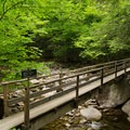 One of the many junctions that lead to other trails throughout the reserve.- Gill Brook Trail