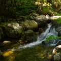 A small waterfall along the trail.- Gill Brook Trail