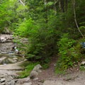A junction with the Gill Brook Trail.- Gill Brook Trail