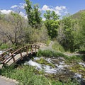 There are some bridges spanning the small creeks.- Cascade Springs