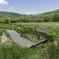 There are benches to enjoy the scenery and watch the butterflies and hummingbirds.- Cascade Springs