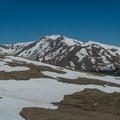 Mount Massive looming north of Elbert.- Mount Elbert East Ridge Hike