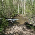 The main obstacle on the four-wheel drive road.- Mount Elbert East Ridge Hike