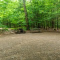 A typical campsite at Mount Ascutney State Park Campground.- Mount Ascutney State Park Campground