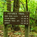 Trailhead in the southern loop of the campground.- Mount Ascutney State Park Campground
