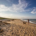A woman walking her dog on the north inlet beach.- Delaware Seashore State Park
