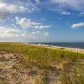 A large expanse of open beach and dune grass.- Delaware Seashore State Park