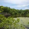 A view of a trail bridge over the lake.- Big Hill Pond State Park