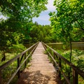 A trail bridge off of Park Trail.- Big Hill Pond State Park