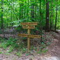 The first intersection marker toward the tower.- Big Hill Pond State Park