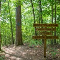 A crossing sign at the top of the Levee Parking Area.- Big Hill Pond State Park