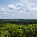 The view from the tower.- Big Hill Pond State Park