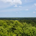 A view of Big Hill Pond from the tower.- Big Hill Pond State Park