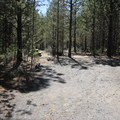 Sites at North Davis Creek are pretty spacious and secluded from one another.- North Davis Creek Campground