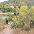 On a stroll to the fishing cove.- Apache Lake Campground + Marina