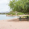 Picnic tables are spread throughout the campground.- Apache Lake Campground + Marina