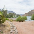 The resort keeps landscaping to a minimum for a natural feel.- Apache Lake Campground + Marina