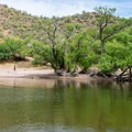 Mesquite trees provide some shade at the water's edge.- Upper Burnt Corral Recreation Site