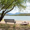 Shade is plentiful here, a welcome relief from the heat.- Burnt Corral Campground