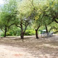 A shady picnic area beside the lake.- Burnt Corral Campground