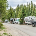 The Fishing Bridge RV Park.- Fishing Bridge RV Park