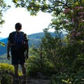 Standing on top of Little Stony Man Cliffs.- Stony Man via Little Stony Man Trail