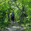 The trail on the return from the Stony Man summit.- Stony Man via Little Stony Man Trail