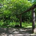 A rail to tie off horses near the summit.- Stony Man via Little Stony Man Trail
