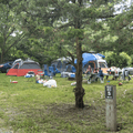 Spacious campsites.- Croton Point Campground