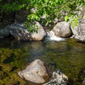 A second pool just down from the Fern Gully pool.- Fern Gully Swimming Hole