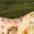 Grand Canyon of the Yellowstone.- Ribbon Lake Trail