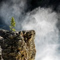 The falls creates a wall of spray.- Brink of Upper Yellowstone Falls