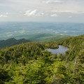 The view north from the Adam's Apple Trail.- Mount Mansfield via Hell Brook + Long Trails