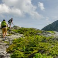 Approaching the top of Adam's Apple. The Chin of Mount Mansfield is to the right.- Mount Mansfield via Hell Brook + Long Trails