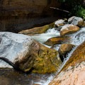 There is plenty of space to spread out in the riffles and boulders of the creek.- Slide Rock Swimming Hole