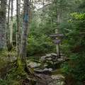 Trail intersection of the Long Trail and Profanity Trail.- Mount Mansfield via Hell Brook + Long Trails