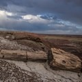 The badlands of the Petrified Forest.- Painted Desert