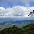 Looking south toward Honolulu and Diamond Head.- Mount Ka'ala