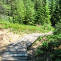 The trail to Old Baldy.- Red Trail