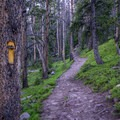 Blazes mark the trail to Lower Red Castle Lake.- Red Castle Lakes + Wilson Peak