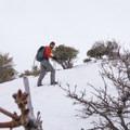 Snowshoeing on Little Black Mountain.- Little Black Mountain