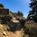 Just across the street from the parking lot, jump onto the Pacific Crest Trail here.- Mount Islip from Islip Saddle