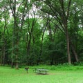 Picnic areas are available on a first-come, first-served basis.- Maquoketa Caves
