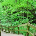 Well maintained trails in Maquoketa Caves State Park.- Maquoketa Caves
