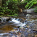 One of the many wooden bridges along the Falls Trail.- Ricketts Glen State Park