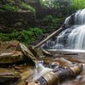 Fallen logs sit downstream of Shawnee Falls.- Ricketts Glen State Park
