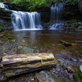 A peice of water-logged wood sits near the bottom of R. B. Ricketts Falls.- Ricketts Glen State Park